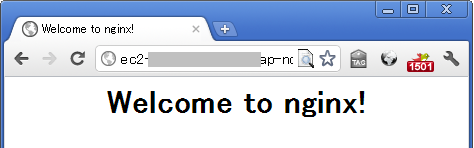 nginx-welcome.png